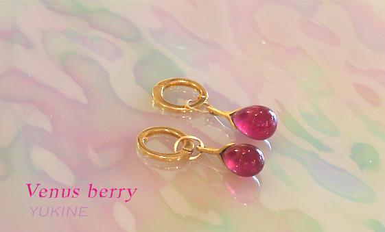 venus berry.5
