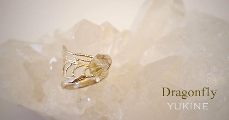 dragonfly_4
